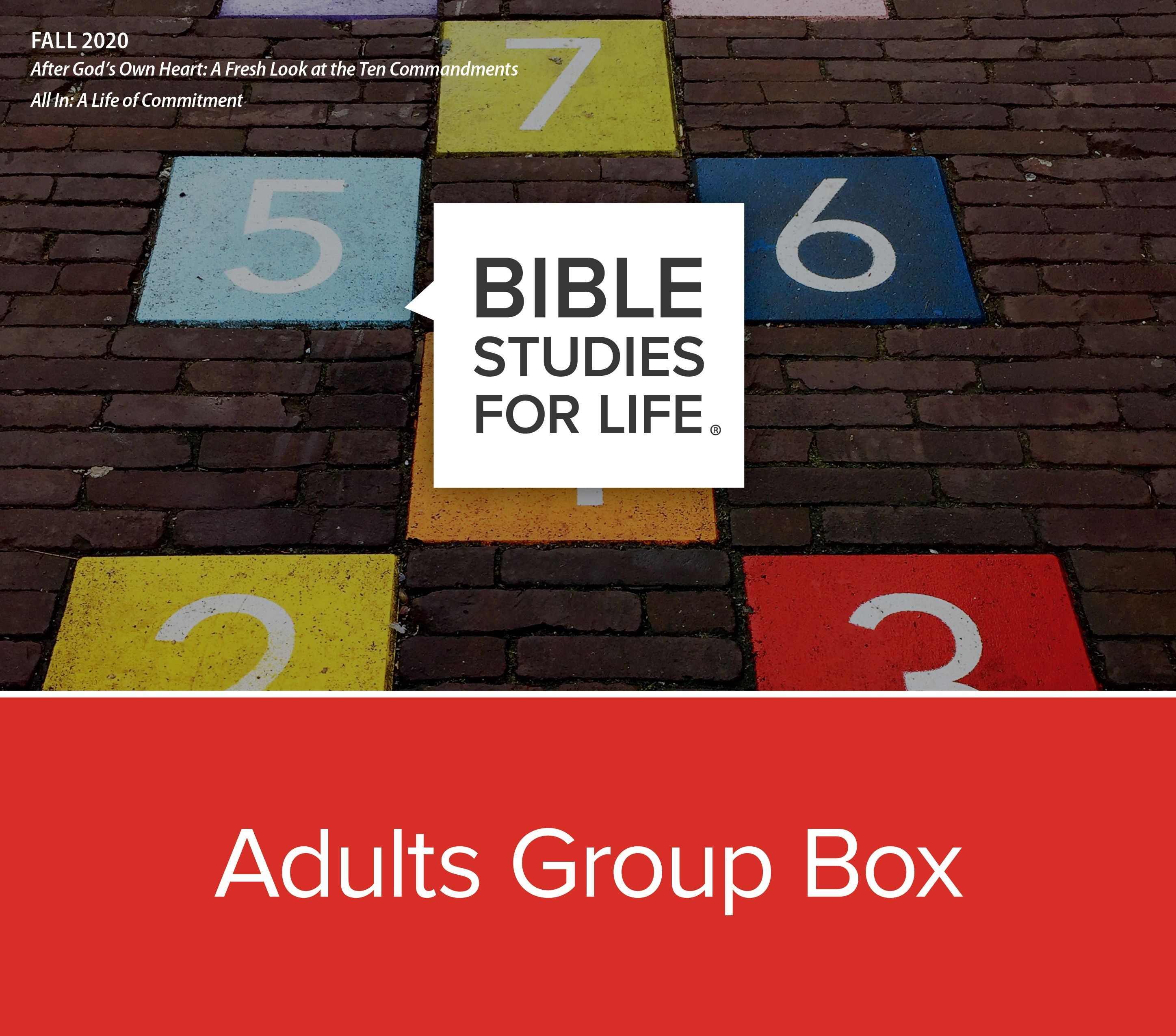 Bible Studies for Life Adults Group Box