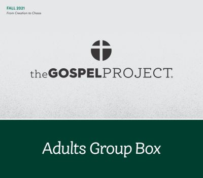The Gospel Project Adult Group Box