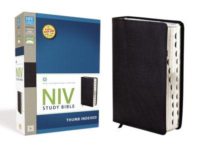 NIV Bible | New International Version Bible | LifeWay