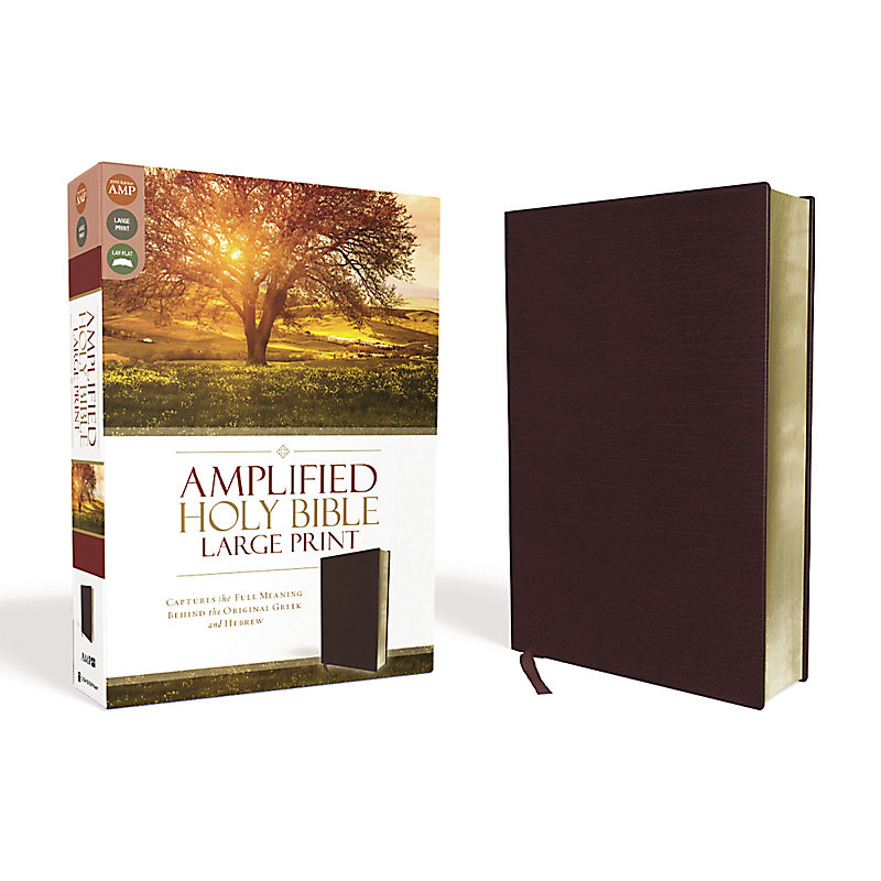 Amplified Bible, Large Print