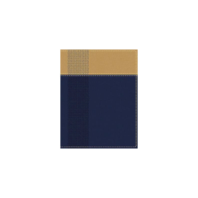 NIV, Starting Place Study Bible, Leathersoft, Blue/Tan, Indexed, Comfort Print