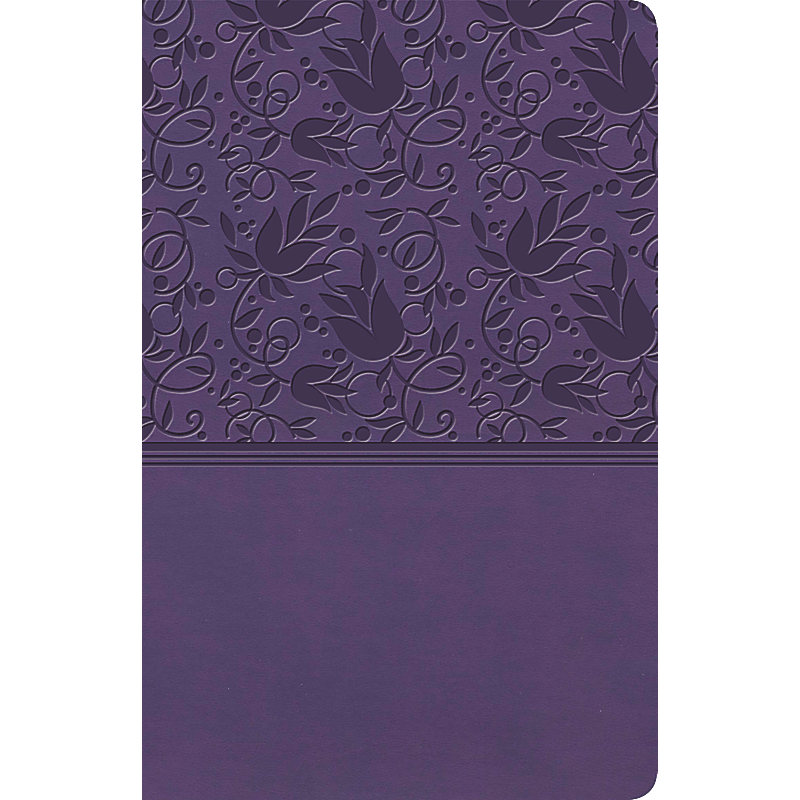 KJV Ultrathin Reference Bible, Purple LeatherTouch, Indexed