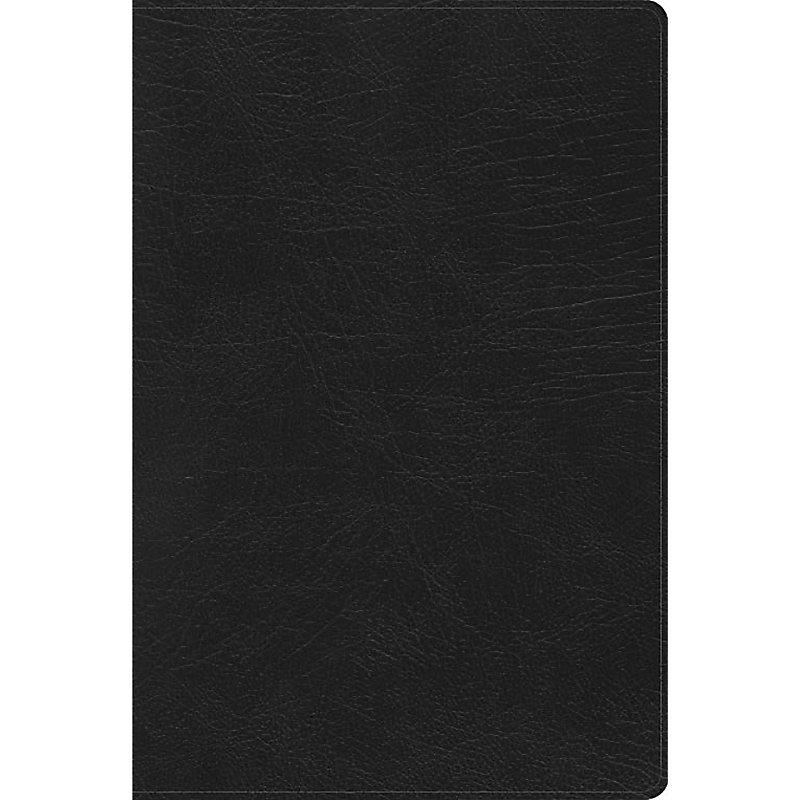 RVR 1960 Biblia de Estudio Arcoiris, negro símil piel