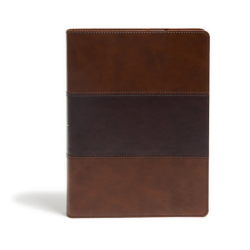 KJV Study Bible, Full-Color, Saddle Brown LeatherTouch, Indexed