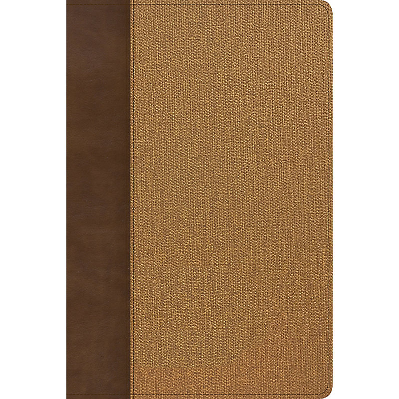 CANCELLED: KJV Rainbow Study Bible, Brown/Tan LeatherTouch, Indexed
