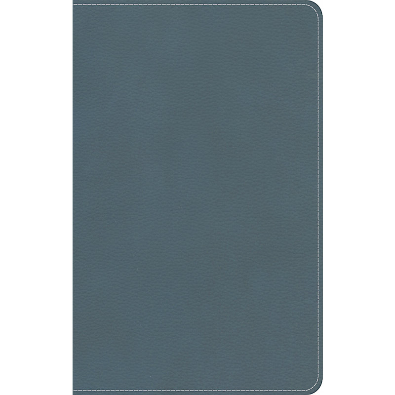 KJV On-The-Go Bible, Personal Size, Steel Blue LeatherTouch