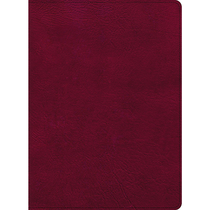 CSB Holy Land Illustrated Bible, Burgundy LeatherTouch