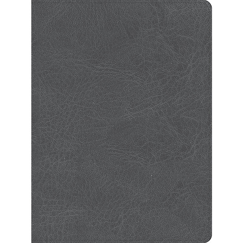 CSB He Reads Truth Bible, Smoke LeatherTouch, Indexed