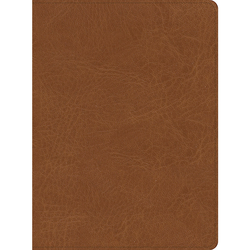 CSB He Reads Truth Bible, Saddle LeatherTouch