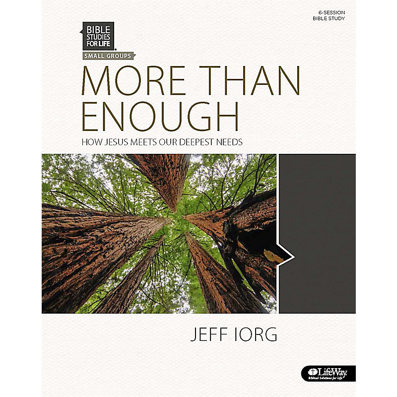 More Than Enough eBook