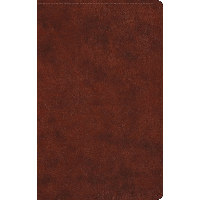 Large Print Value Thinline Bible-ESV