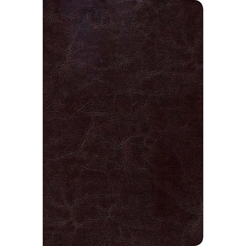 RVR 1960 Biblia de Estudio Scofield Tamano Personal, chocolate oscuro símil piel