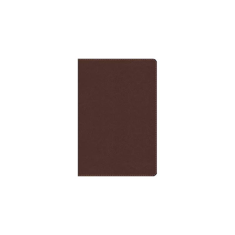 RVR 1960 Biblia de Estudio Arco Iris, chocolate símil piel con índice