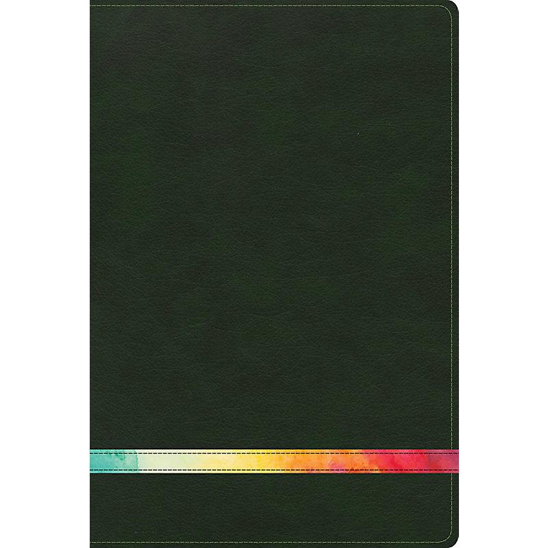 RVR 1960 Biblia de Estudio Arco Iris, verde profundo/multi símil piel