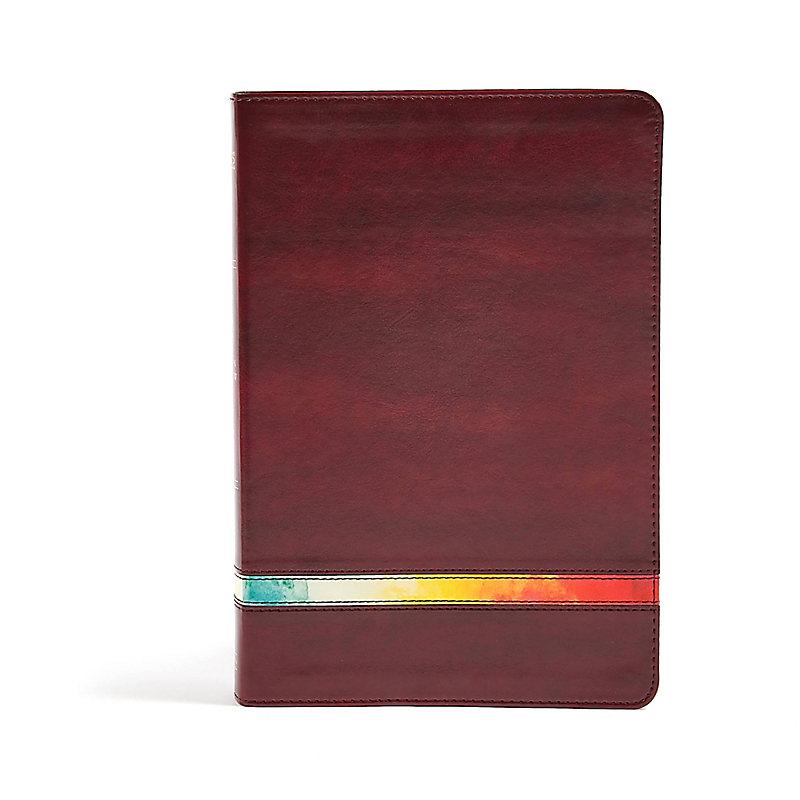 NIV Rainbow Study Bible, Maroon LeatherTouch