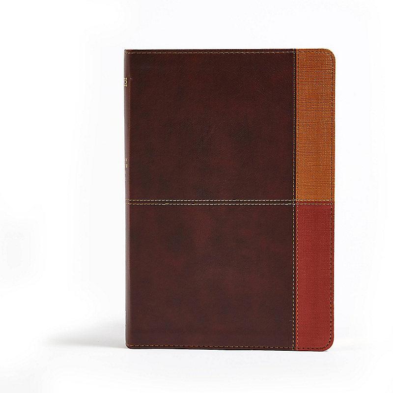 NIV Rainbow Study Bible, Cocoa/Terra Cotta/Ochre LeatherTouch
