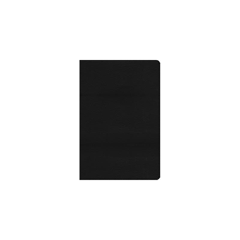 RVR 1960 Biblia de Estudio Arco Iris, negro imitación piel con índice