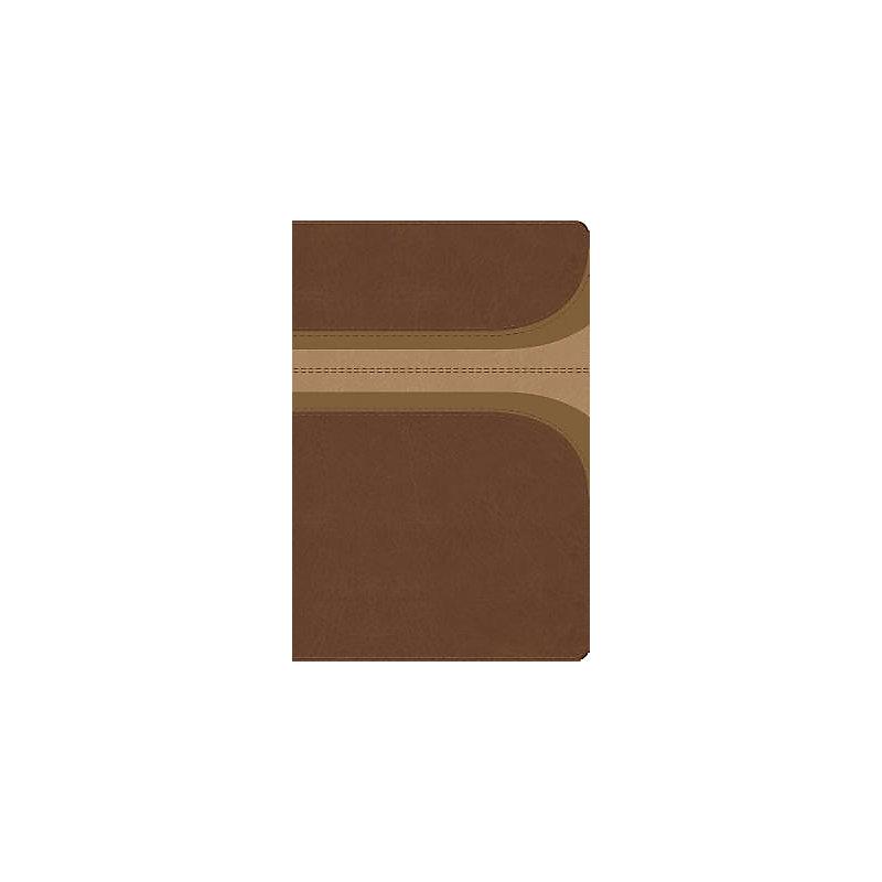 RVR 1960 Biblia de Estudio Arco Iris, canela/damasco, símil piel