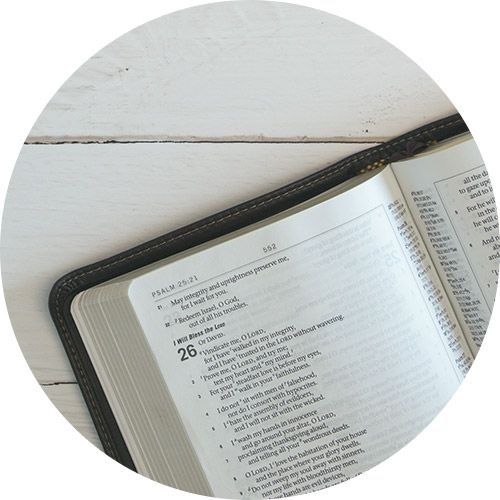 spring sale, bible, reference books, Lifeway