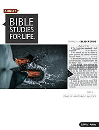 Bible Studies for Life Leader Guide