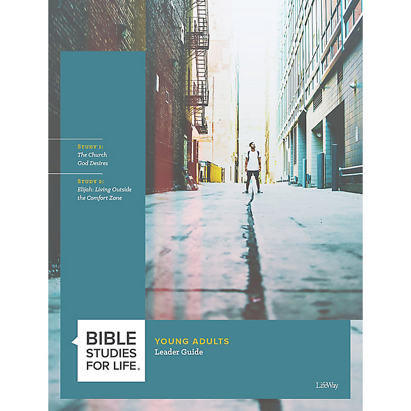 Bible Studies for Life: Young Adult Leader Guide - Summer 2021
