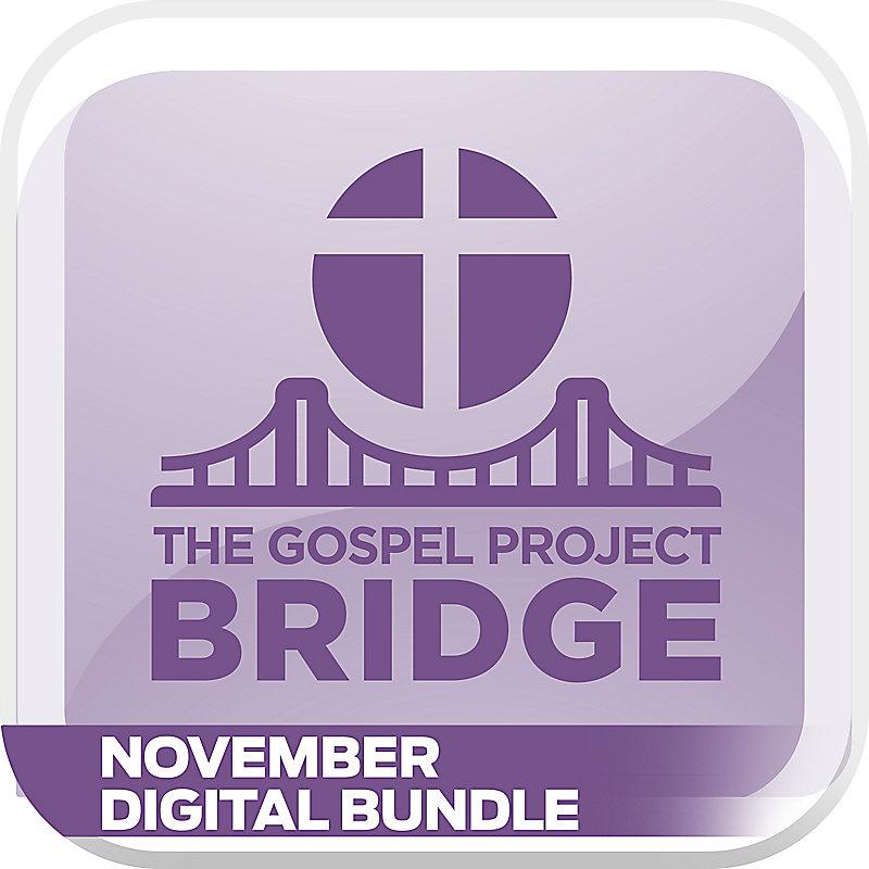The Gospel Project Bridge: November