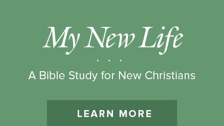 My New Life Bible Study