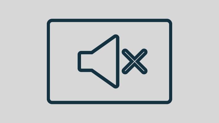 Audio Speaker off icon