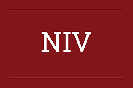 NIV Life Application Study Bibles
