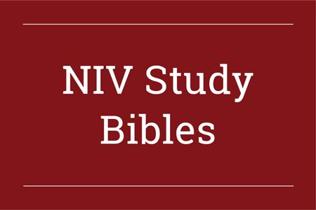 NIV Study Bibles