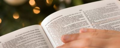 picture relating to Free Printable Bible Study Lessons With Questions and Answers titled No cost Xmas Courses for All Ages