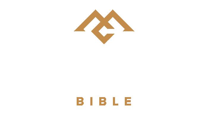 CSB Men of Character Bible