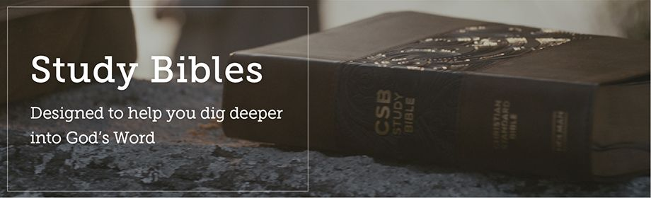 Study Bibles - Dig Deeper into God's Word