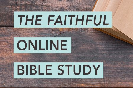 The Faithful Online Study