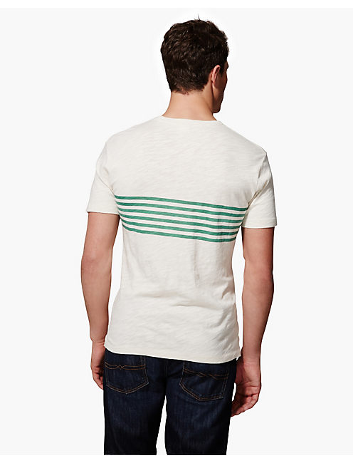 PLACED PRINT 1PKT CREW, STONE WHITE / PINE GREEN