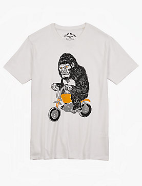 MINI BIKE GORILLA