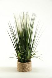 "Mixed Grasses- 30""H"
