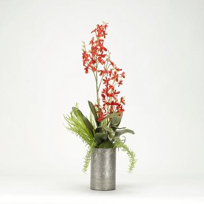 "Delphinium Orchids- 32""H"