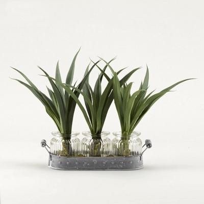 "Green Lily Grass- 12""H"
