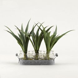 "Green Lily Grass- 12""H"
