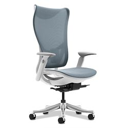 Raleigh High Back Mesh Chair