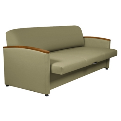 Sleeper Sofa with Pull-Out Cushions