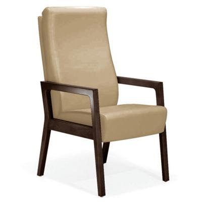 La Z Boy Odeon Patient Chair