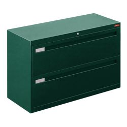 "Spectrum Two Drawer Lateral File - 42""W"