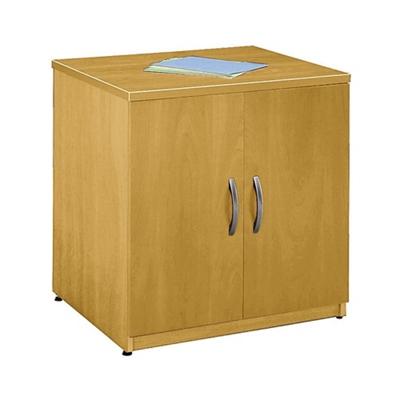 Two-Door Storage Cabinet