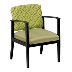 Mason Street Fabric and Polyurethane Guest Chair with Arms