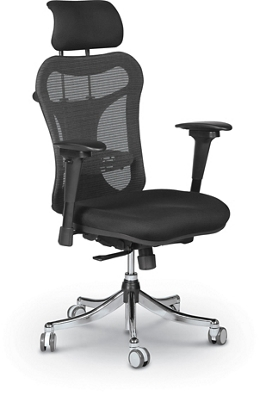 Ergonomic Executive Chair with Headrest