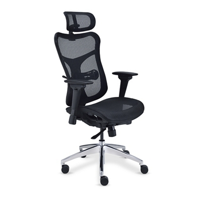 Rand Ergonomic Mesh Executive Chair with Headrest