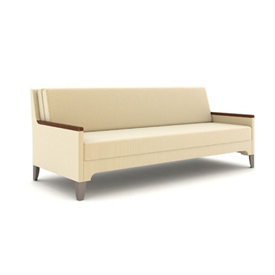 """Daybed with Fold Down Back Cushion - 80""""W"""