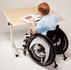 Shown in use with wheelchair